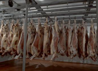 Производство оборудования для пищевой промышленности